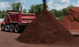 mulch photo